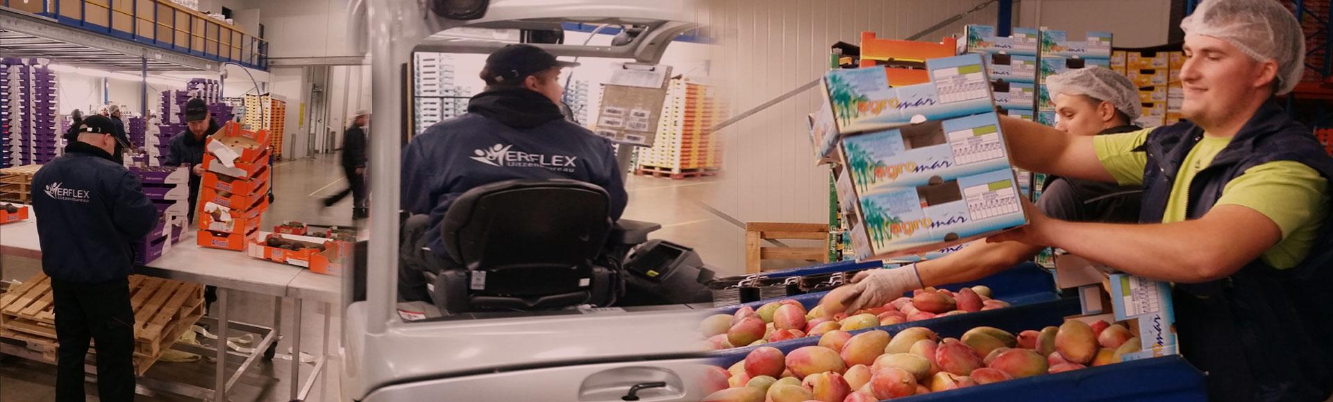 Arbeidskrachten voor het verpakken en sorteren van groente, fruit en bloemen.